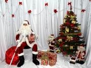 Mos Craciun si cadourile sale